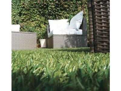 L 39 actualit de mustapis l 39 expert du tapis d 39 entr e for Jardin chinois miniature
